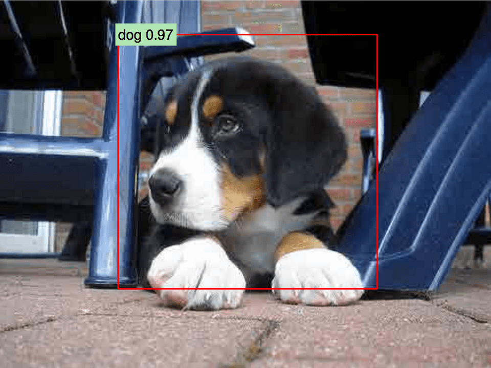 Fast region proposal with convolutional neural networks cute dog cover