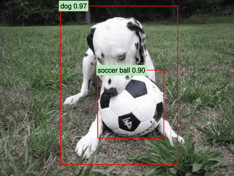 Region proposals with convolutional neural networks dog with ball object detection