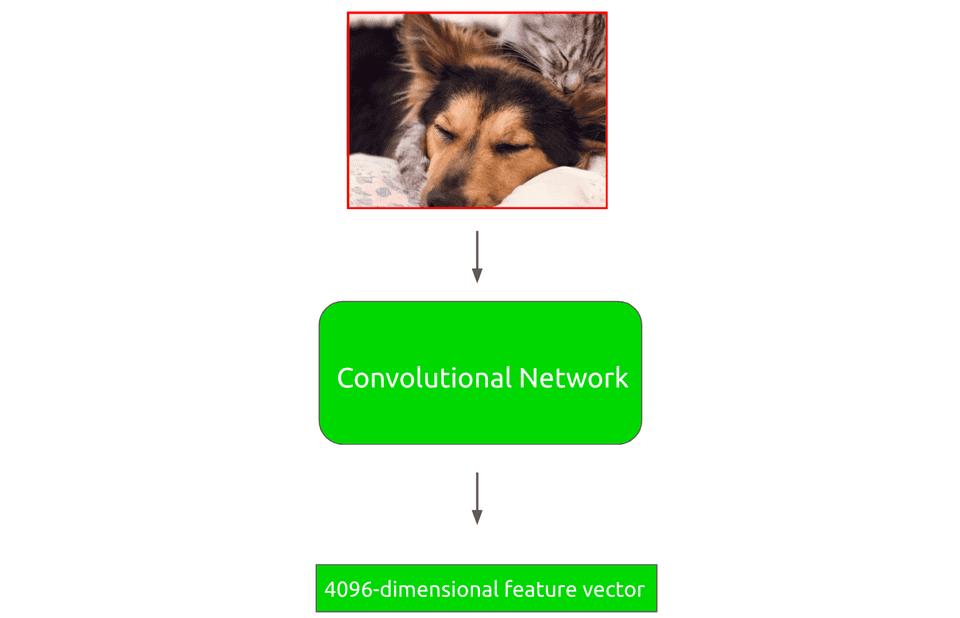 Region proposal through convolutional neural network