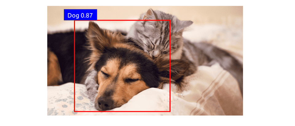 scored dog region proposal for object detection