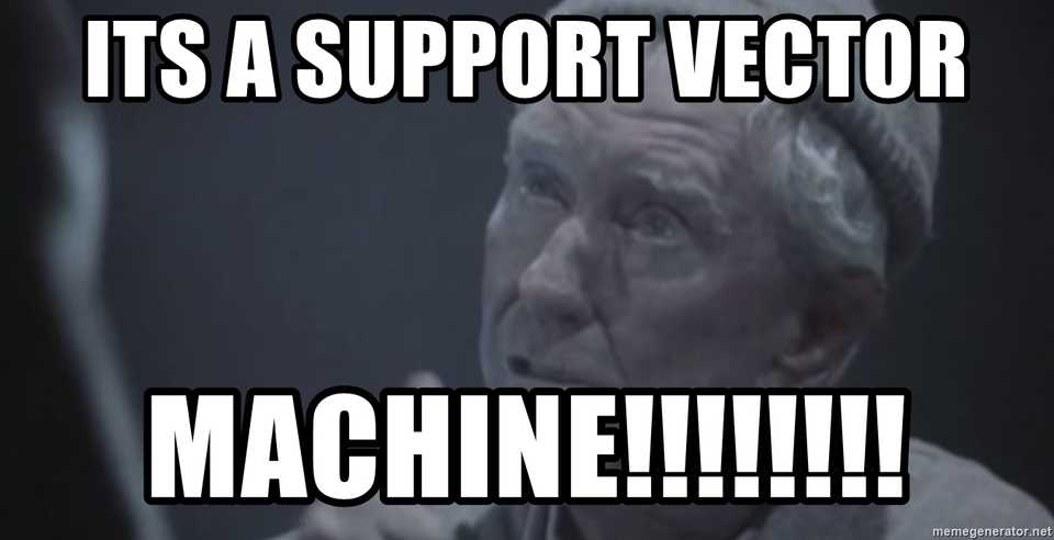 it's a support vector machine!